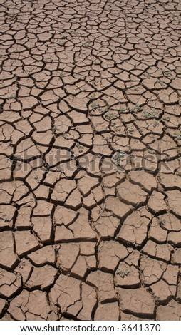 Dried up lake near Oure Cassoni camp for refugees from Darfur.  At the Northern end of the Sahel zone in Eastern Chad - where the Sahel meets the expanding Sahara desert. - stock photo
