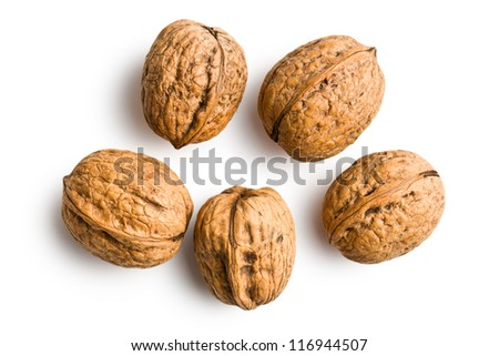 dried walnuts on white background - stock photo