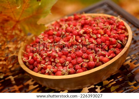 Dried wild rose hips in an artisan wooden bowl in autumn - stock photo