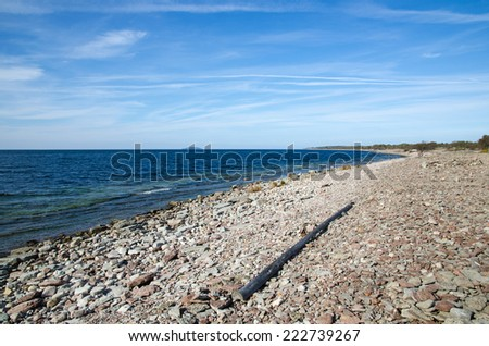 Driftwood at the stony coast of Baltic Sea in Sweden - stock photo