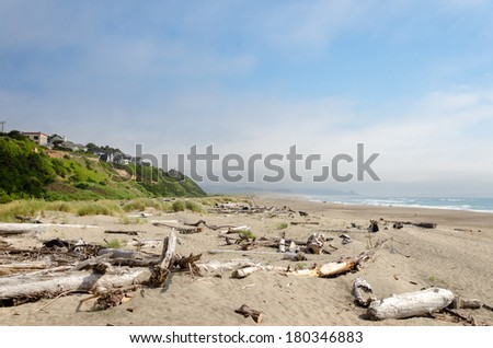 Driftwood covered beach at Lincoln City, Oregon - stock photo