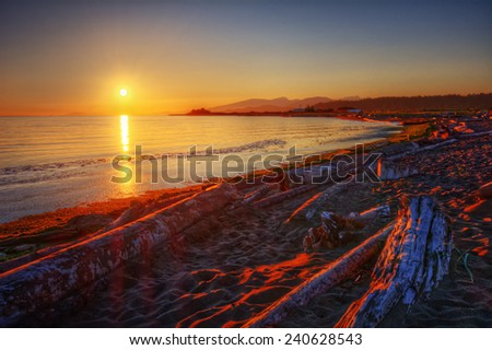 Driftwood flanking a sandy shore at sunset - stock photo