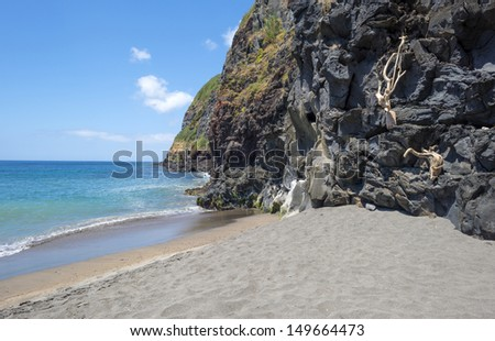 Driftwood on the rocks of a cliff of the Azores - stock photo