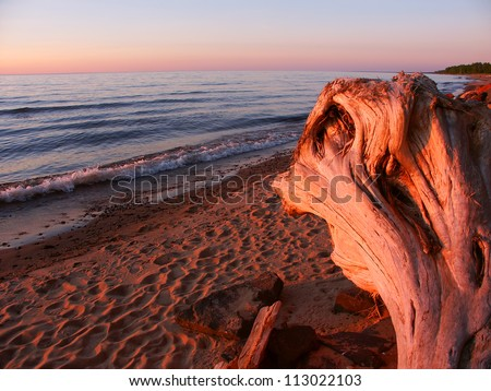 Driftwood washed up along the shoreline of Lake Superior in the Upper Peninsula of Michigan - stock photo