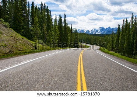 Driving on the long Road in nature - stock photo