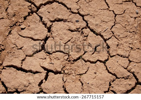 Drought, great distress. - stock photo