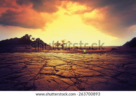 Drought land - stock photo