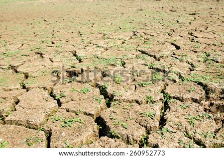 Drought, the ground cracks, no hot water, lack of moisture. - stock photo