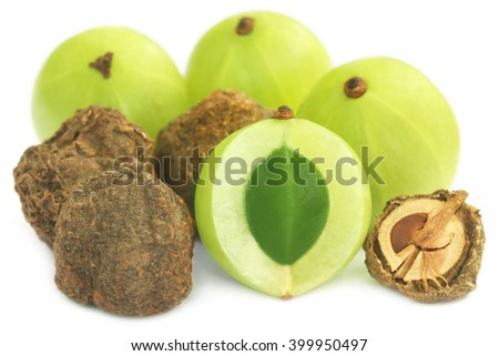 Dry and fresh amla over white background - stock photo