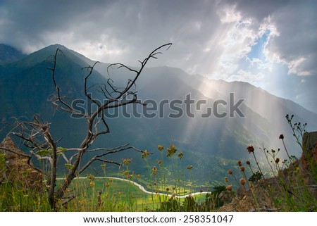 dry bush on the background of sunlight that cut through thick clouds, all this amidst the Caucasus - stock photo