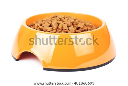 Dry Cat Food In Orange Bowl - stock photo