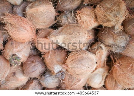 Dry Coconut for produce coconut milk, Dry Coconut peel off for sales market - stock photo