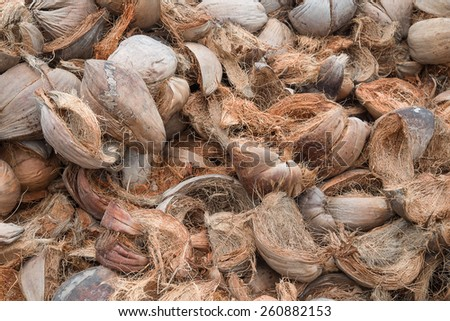 Dry coconut shells in thailand. - stock photo