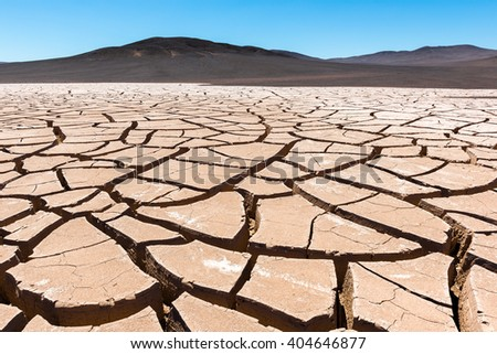 Dry cracked earth, Atacama (Chile) - stock photo