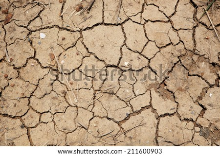 dry cracked earth for texture background - stock photo