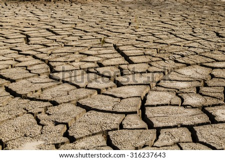 Dry cracked sand flats during drought - stock photo