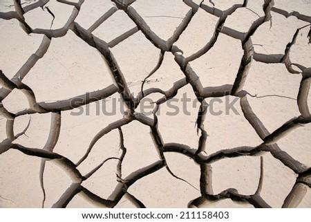 dry earth texture - stock photo