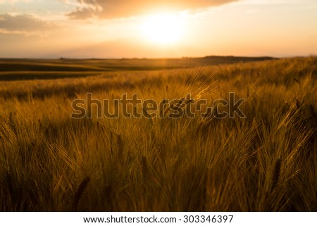 Dry Farm In Idaho - stock photo