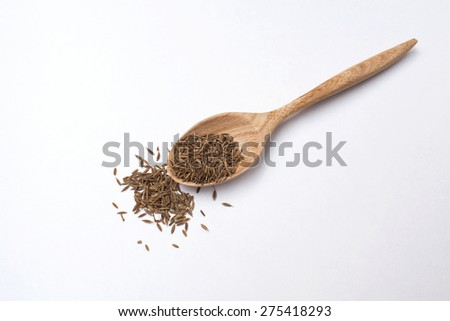 Dry fennel seed in wooden spoon with space on white background - stock photo