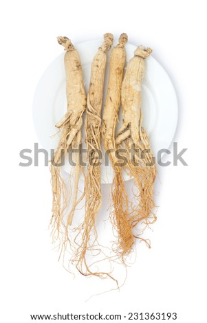 dry ginseng roots on the plate - stock photo