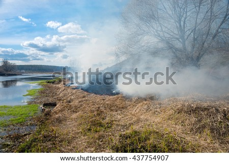 Dry grass burning in the early spring - stock photo
