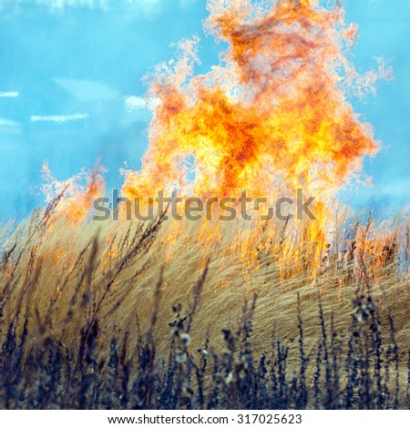 Dry Grass Field Fire Disaster  - stock photo