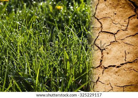 Dry land. - stock photo