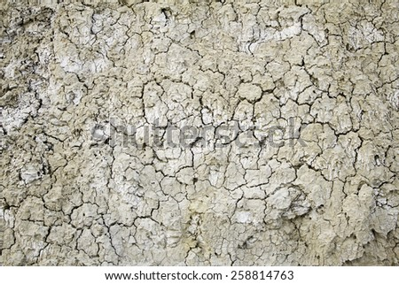Dry land in a field, detail of a drought, climate damage, catastrophe, textured background - stock photo