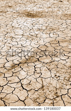 dry land in summer in europe - stock photo