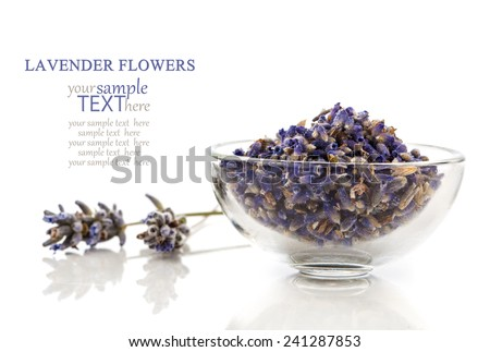 dry lavender flower, isolated on white background - stock photo