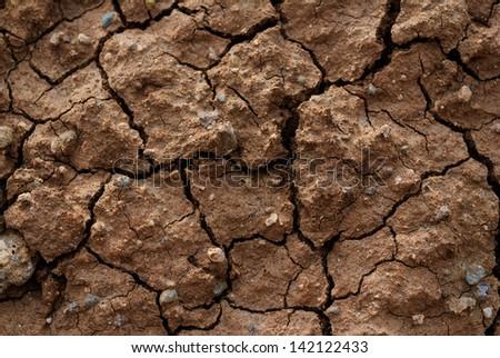 Dry pattern mud closeup texture - stock photo