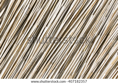 Dry Reed Background - stock photo
