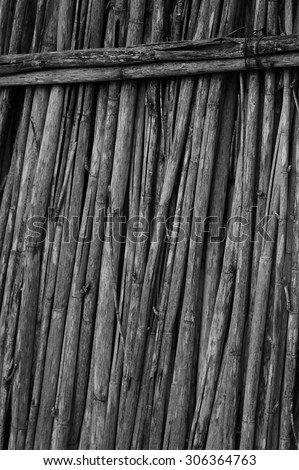 Dry reed wall aligned and attached construction - stock photo