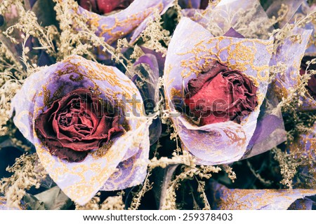 dry rose flower. - stock photo
