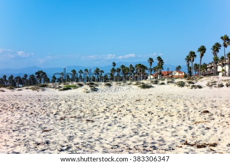 Dry sand with tropical palms of Mandalay beach on ocean side of Oxnard, Southern California - stock photo