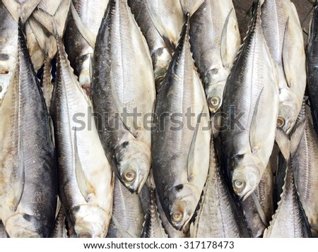 dry sardines on the basket ; fish background - stock photo