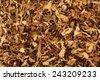 Dry smoking tobacco close-up - stock photo