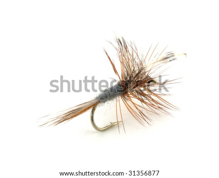 Dry trout fishing fly - stock photo