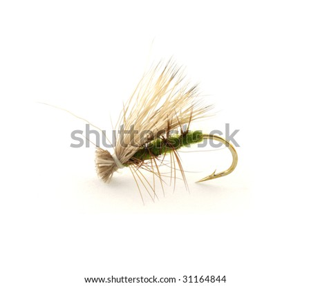 Dry trout fly - stock photo