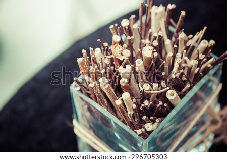 Dry twigs in a vase, process color - stock photo