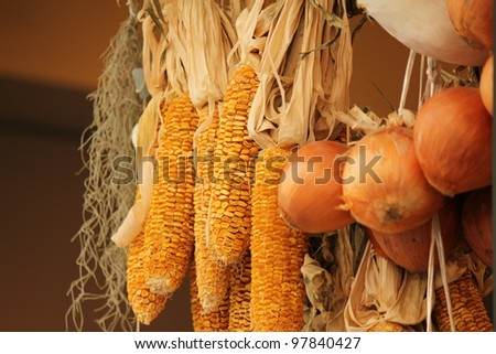 Dry vegetable, hung up window - stock photo