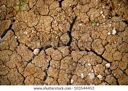 Dry yellow soil in the desert. Texture for background - stock photo