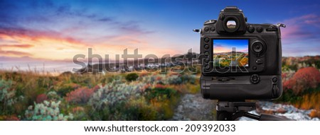 Dslr camera shooting at sunset on Mediterranean vegetation - stock photo