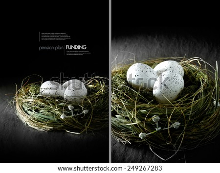 Dual image concept image for financial asset management. White speckled  eggs in a grass bird's nest against a black background. Copy space. - stock photo