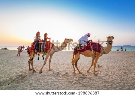 DUBAI, UAE - MARCH 30: Camel ride on the beach at Dubai Marina on March 30, 2014, UAE. Dubai Marina is a district in Dubai with artificial canal city, it accommodates more than 120,000 people. - stock photo
