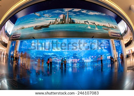 DUBAI, UNITED ARAB EMIRATES - MAY 2: Dubai Aquarium and Under Water Zoo in the shopping mall's interior in Dubai on May 2, 2012. The Dubai Mall is the world's largest shopping mall. - stock photo