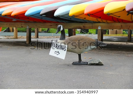 """Duck-dummy holding in its beak a sign """"Parking"""". Near - canoes and kayaks - stock photo"""