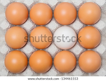 Duck egg among chicken eggs on paper tray - stock photo