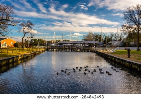 Ducks in a creek, in St. Michael's, Maryland. - stock photo