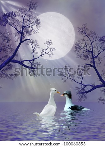 Ducks in the lake with tree silhouette - stock photo